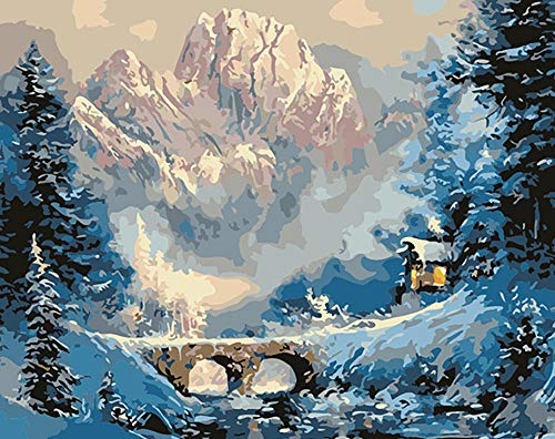 XKLHXFY Pintar por Numeros Adultos NiñosLodge de montaña de nieveDibujos para Pintar con Pinturas y Pinceles 40 x 50 cm Principiantes Fácil sobre Lienzo con Números Sin Marco