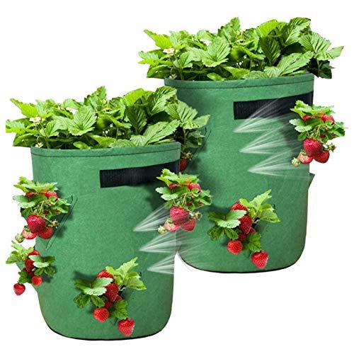 Sunshine smile Kartoffel Pflanzsack,Erdbeere Pflanzsack,Blumen Pflanzbeutel,2 Pack Pflanzen Tasche mit Griffen und seitliche Wachstumstaschen,Gemüse Pflanzgefäße Töpfe ContainerWiederverwendbar
