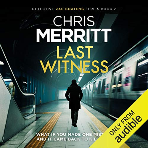 Couverture de Last Witness