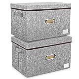 Aufbewahrungsbox mit Deckel Groß aus Stoff 2er Pack Waschbare Stoffbox Faltbare Aufbewahrungskiste in Würfelform für Kleiderschrank, Unterbett, Kinderzimmer, Bad