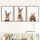 Nursery Front And Back Rabit 3 Piezas Wall Art Canvas Painting Posters And Print Kids Room Girl And Boy Room Decoración...