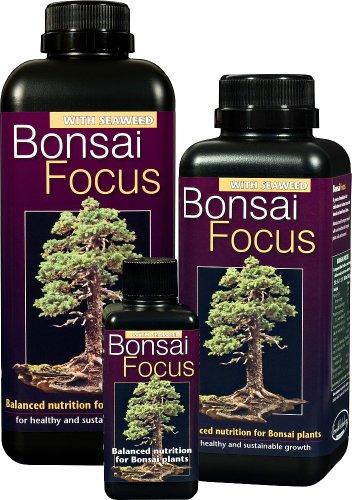 Bonsai Focus 100ml–Liquid Bonsai Feed