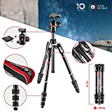Image of Manfrotto MKBFRTC4-BH Befree Advanced Travel Tripod, Twist Lock with Ball Head for Canon, Nikon, Sony, DSLR, CSC, Mirrorless, Up to 8 kg, Lightweight with Tripod Bag, Carbon, Black