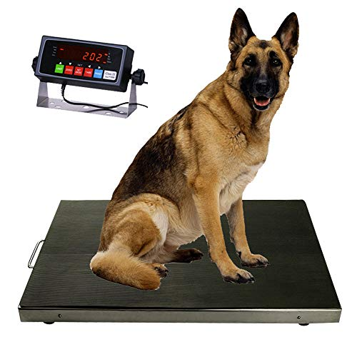 """PEC Vet Animal Scale/ Small Livestock Scale/ Digital Weighing Platform for Dogs, Cats or Pets 18' x 18"""""""
