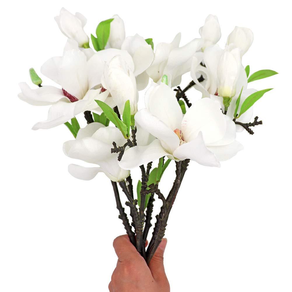 Amazon Com Liucogxi 6 Pcs White Silk Artificial Magnolia Flowers Decoration Bouquet With Long Stem For Home Table Centerpiece Office Vase Kitchen Dining