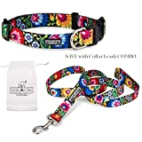 Lucky Love Dog Collars | Vivid Floral Girl or Boy Dog Collar & Leash Set for Tiny Dogs - Blackbird, XS
