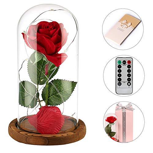 anaoo Rose im Glas mit LED-Licht aus Seide mit Fernbedienung, Die Schöne und das Biest, Künstliche Rose Geschenk zum Valentinstag, Muttertag, Geburtstag, Jubiläum, Weihnachten, Hochzeit