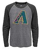 Fanatics Men's MLB Arizona Diamondbacks Jumbo Logo Long Sleeve Crew Neck Tee (L) Gray