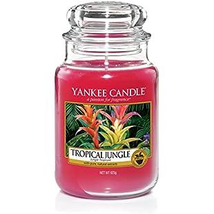 Yankee Candle Tropical Jungle Jar, Pink, 10.7 x 10.7 x 16.8 cm