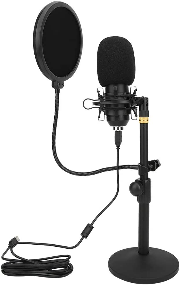 Haowecib Direct store Rare Recording Microphone Plug and Reduction Noise Play USB