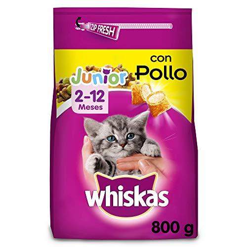 Whiskas Pienso para gatos junior con sabor Pollo (Pack de 5 x 800g)