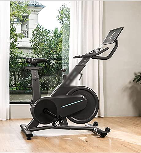 CJDM Bicicletas giratorias, Bicicletas de Pedales para el hogar, Bicicletas estáticas de magnetrón para Interiores, gimnasios, Equipos de Ejercicio de la Empresa