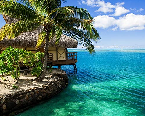 Diamond Painting Malen Nach Zahlen Schönes Maledivisches Strandhaus Natürliche Landschaften Vierkantbohrer 60X80Cm Helfen Sie Stress Abzubauen Und Sich Zu Entspannen