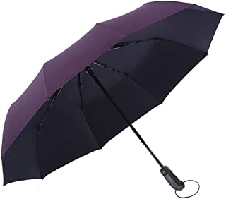 Folding Umbrella by Tiiyar – Large Windproof Ultravioletproof Auto Open/Close Water-Repellency Travel Umbrella/Golf Umbrella,210T Fabric Canopy 10 Ribs with Carrying Bag (Purple)