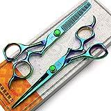 ZWJ-JJ 6 pulgadas Aurora Profesional tijeras de peluquería, corte de pelo peluquería y tijeras de reducción Conjunto