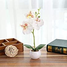 Simulated Plant Bonsai Indoor Butterfly Orchid Bonsai Plants Elegance Tranquilit