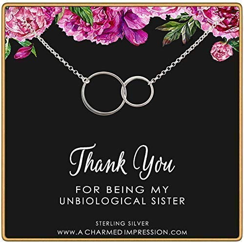 Unbiological Sister Gifts • Sisters Jewelry • Gifts for Best Friend • Christmas Gifts for Women • Sterling Silver Necklaces for 2 3 4 • Friendship Necklace • Birthday Gift • Gratitude and Appreciation