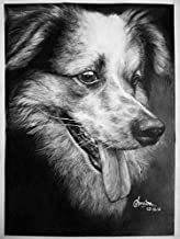 SmileMiddle Handmade Pet Charcoal Sketch | Photo to Sketch | Custom Portrait | Wedding, Birthday, Anniversary, Valentine's Day, Girlfriend, Boyfriend Gift (12 x 16.5 inches (A3) - One Face/Subject)