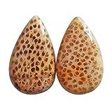 Coppia di orecchini in legno di palma Louisiana naturale diaspro cabochon, a forma di pera, dimensioni 20x12x4 mm, coppia di legno pietrificato, AG-13758