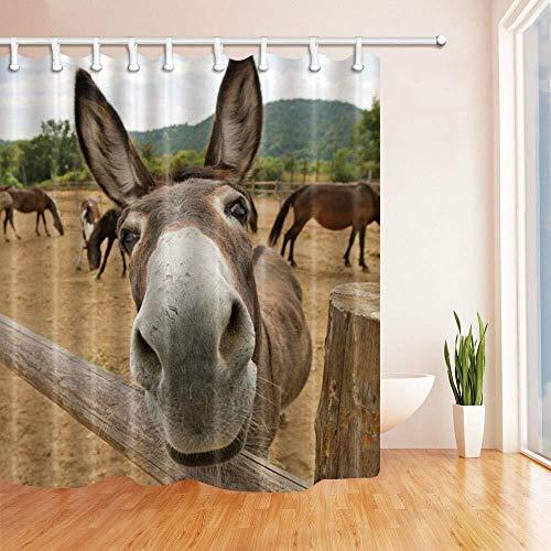 kglkb Duschvorhang,Bauernhof Esel Pferd Badezimmer Duschvorhang, Wasserdichtes Gewebe 71 * Haken 180X180 cm