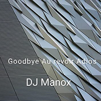 Goodbye Au Revoir Adios