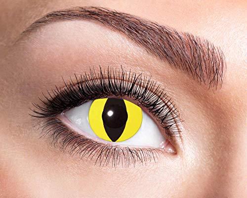 EYECATCHER Farbige Kontaktlinsen gelb, ohne Stärke - Farblinsen Kontaktlinsen Halloween - Weiche Kontaktlinsen inkl. Pflegemittel und Aufbewahrungsbox (Yellow Cat)