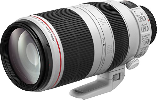 Canon EF-100-400mm f/4.5 - 5.6 IS USM