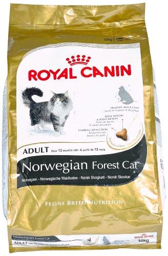 ROYAL CANIN Katzenfutter Norwegische Waldkatze 10 kg, 1er Pack (1 x 10 kg)