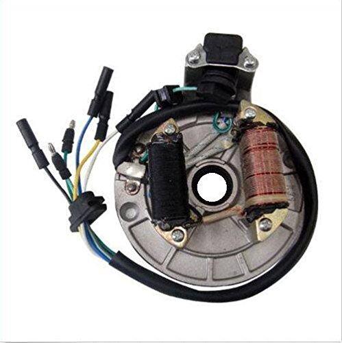 Preisvergleich Produktbild Monkey - DAX - ATV - Dirtbike Zündung Dirtbike Pitbike Cross Lichtmaschine Zündung 12V Kickstart
