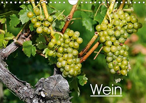Wein (Wandkalender 2021 DIN A4 quer)