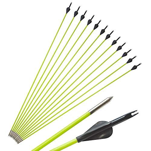 ZSHJGJR 30 Inch Archery Fiberglass Arrow Spine 600 Arrow Hunting Target Practice Arrow for 10-30 Lbs Recurve Straight Compound Bow 6 or 12pcs (6pcs)