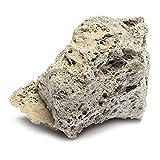 SparY Piedra pómez Flotante Natural para Acuario (9 cm - 15 cm)