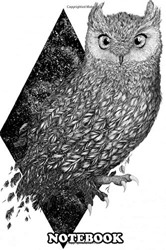 Notebook: Cosmic Owl , Journal for Writing, College Ruled Size 6' x 9', 110 Pages