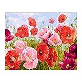 Flores Rojas Pintura de Bricolaje por Números Flores Arte de la Pared Imagen por Números Pintura de Caligrafía 40X50Cm sin Marco