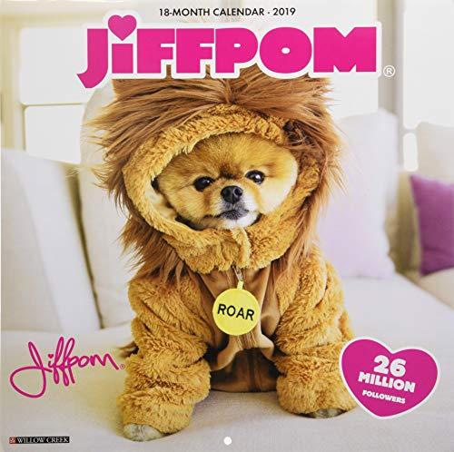 Jiffpom 2019 Wall Calendar (Dog Breed Calendar)