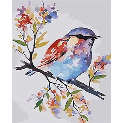 Amrzxz DIY-Pájaro Colorido en la Rama Herramientas de Pintura DIY de Lienzo Digital para niños y Adultos yprincipiantes(sin Marco) 30x40cm