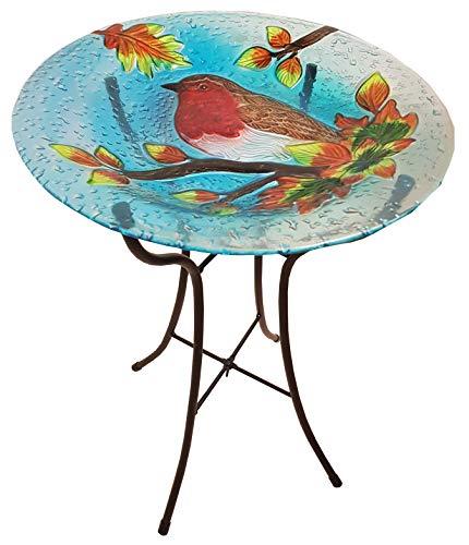 Fountasia grote Robin vogel bad glas tuin decoratie