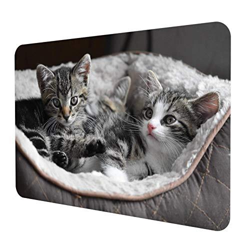 Gaming Office Mauspad – 290 x 250 mm Maus Pad – Mousepad Schwarz Optimale Gleitfähigkeit - Umweltfreundlich (Katze)
