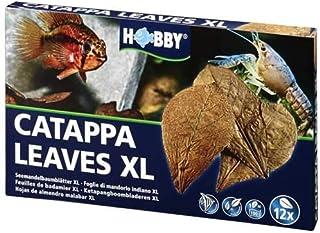 HOBBY Aquarium,Catappa Leaves XL (12 pcs)