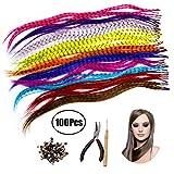 Lvcky Kit d'extension de Cheveux synthétiques avec 52 Couleurs Assorties Stick Tip Extensions de Cheveux, 100 Perles, Pince et Crochet (Couleurs Vives et Mixtes)