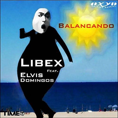 Libex feat. Elvis Domingos