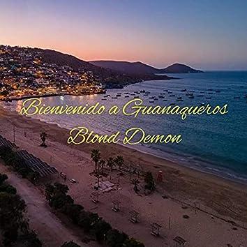 Bienvenido a Guanaqueros