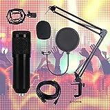 Dan&Dre Juego de micrófono Profesional, Juego de micrófono USB, Juego de micrófono de Condensador Profesional, micrófono de grabación para computadora, Juego de transmisión en Vivo