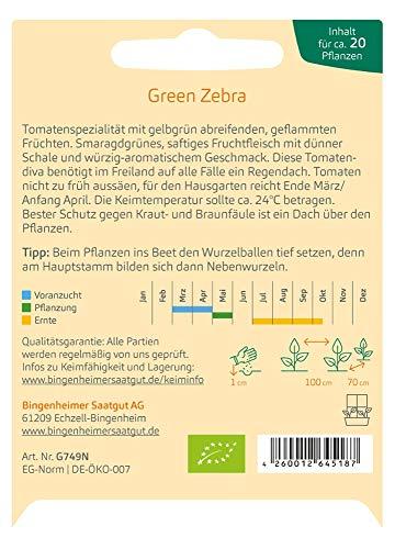 Bingenheimer Saatgut Tomate Green Zebra demeter bio für ca. 20 Pflanzen