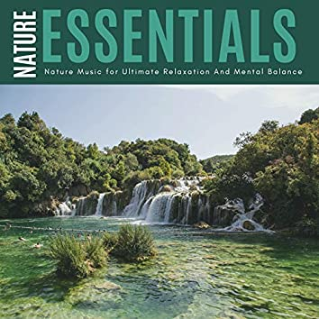 Nature Essentials - Nature Music For Ultimate Relaxation And Mental Balance