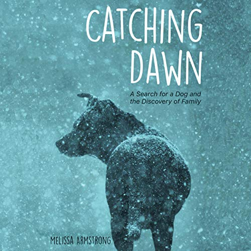 Catching Dawn Audiobook By Melissa Armstrong cover art