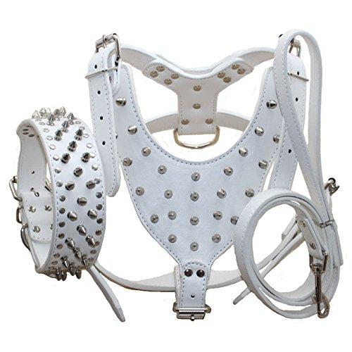 haoyueer Juego de 3 collares de perro, arneses y correas de piel con tachuelas para Pit Bull, Mastín, Boxer, Bull Terrier (M, blanco)