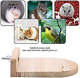 Piattaforma di legno pappagallo posatoi stand per criceto trampolino giocattolo scoiattolo...