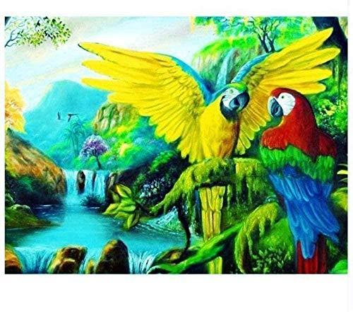 shuodade DIY Pintura Digital para Adultos Niños Principiantes Arte de la Lona Kit de acrílico Abstracto Dormitorio Sala de Estar Decoración de la Pared Cascada Parrot-40x50cm Sin Marco