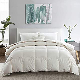 APSMILE Premium Heavyweight Goose Down Comforter Queen Duvet Insert for Colder Climates/Sleeper - 100% Organic Cotton, 650...